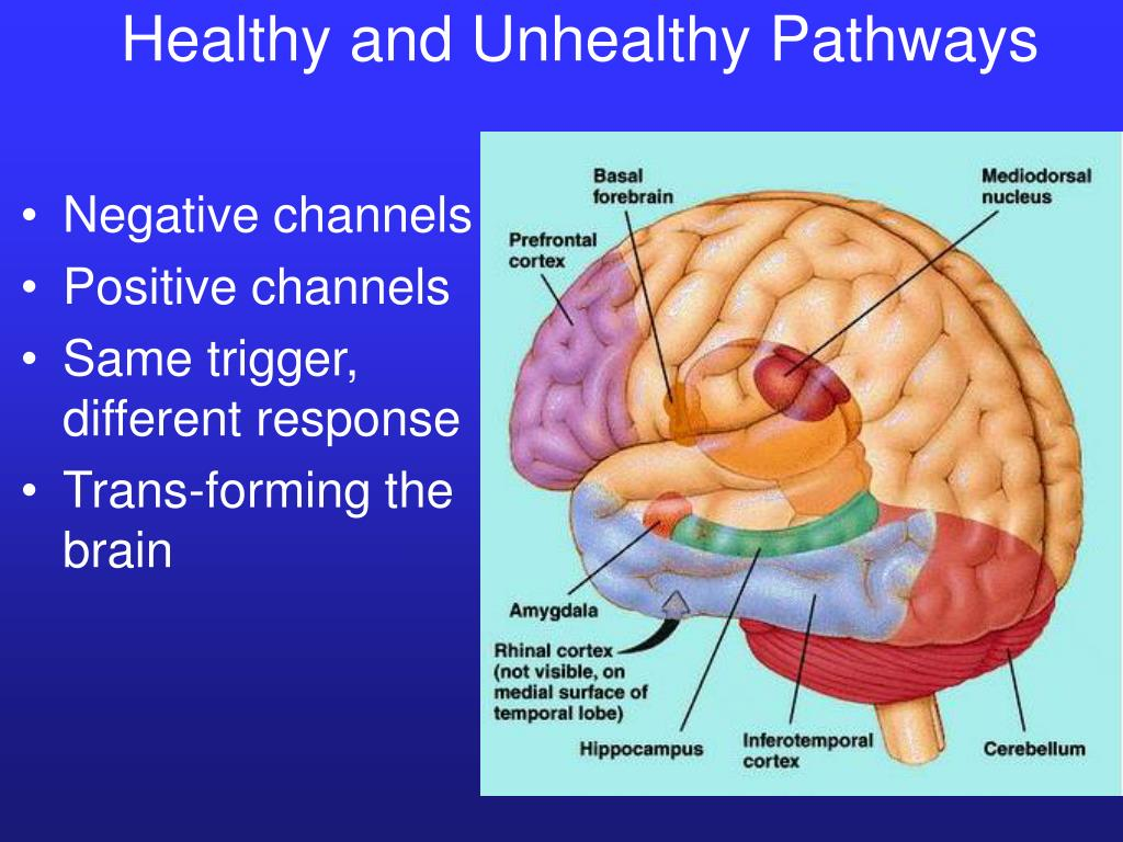 Healthy and Unhealthy Pathways