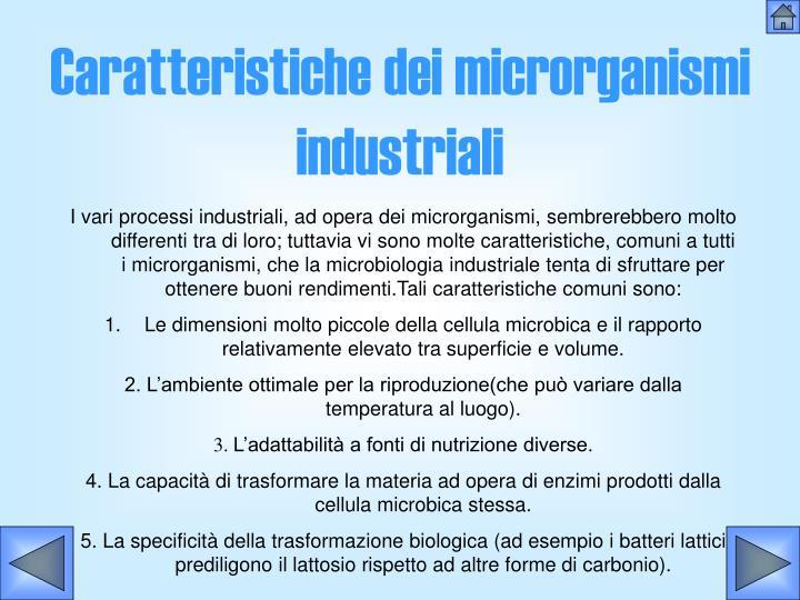 Caratteristiche dei microrganismi industriali