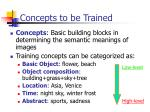concepts to be trained
