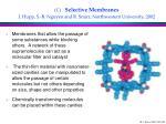 c selective membranes j hupp s b nguyen and r snurr northwestern university 2002