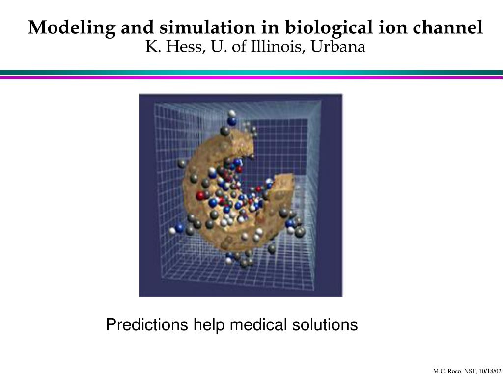 Modeling and simulation in biological ion channel
