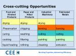 cross cutting opportunities