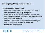 emerging program models