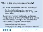 what is the emerging opportunity