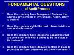 fundamental questions of audit process