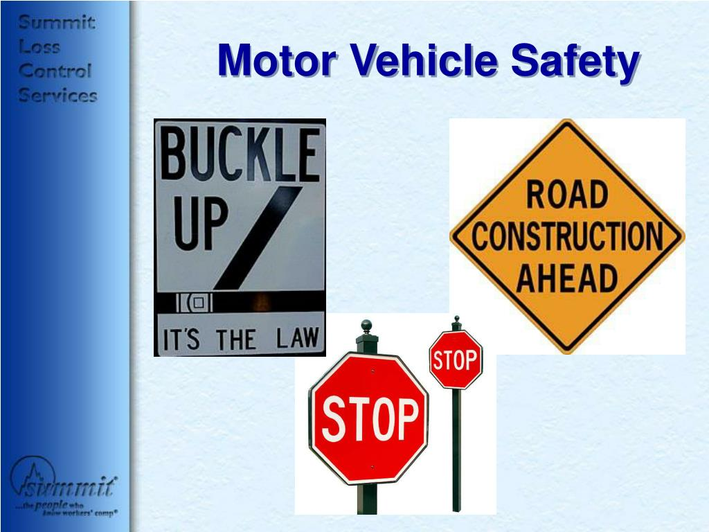 motor vehicle safety l.