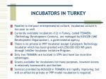 incubators in turkey