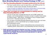 base breeding blanket and testing strategy in fnf con t