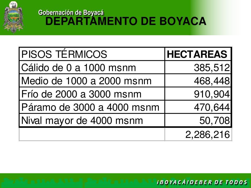DEPARTAMENTO DE BOYACA