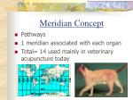 meridian concept