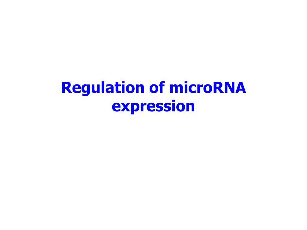 Regulation of microRNA expression
