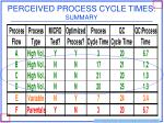 perceived process cycle times summary
