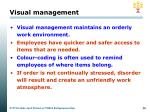 visual management