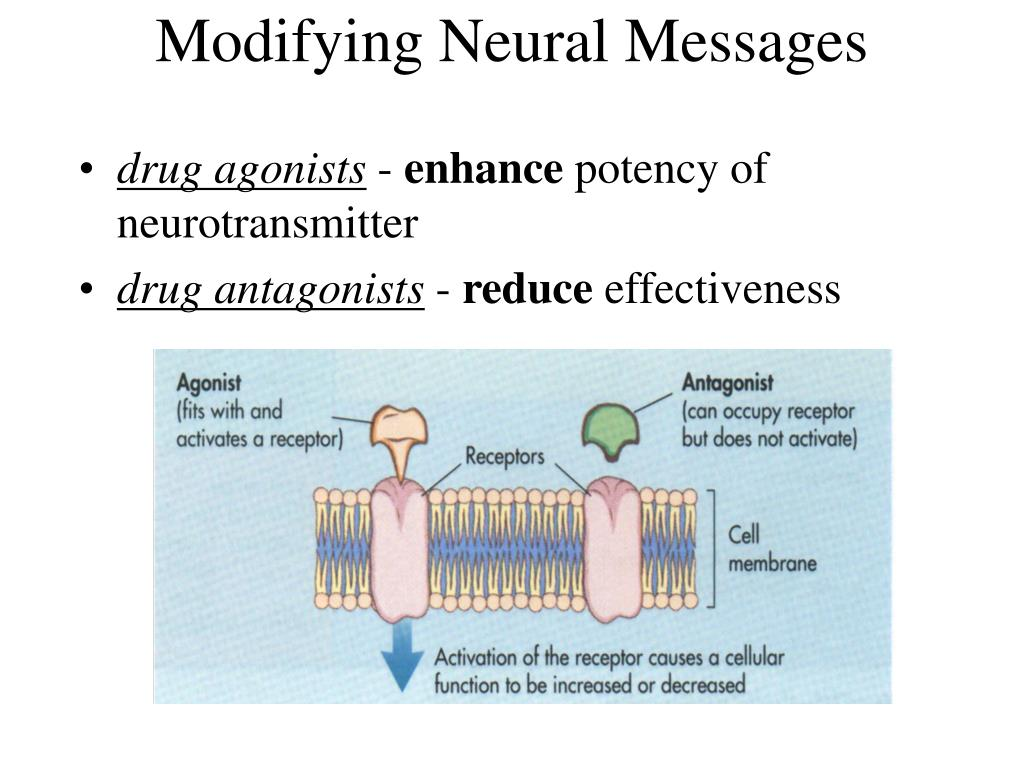 Modifying Neural Messages