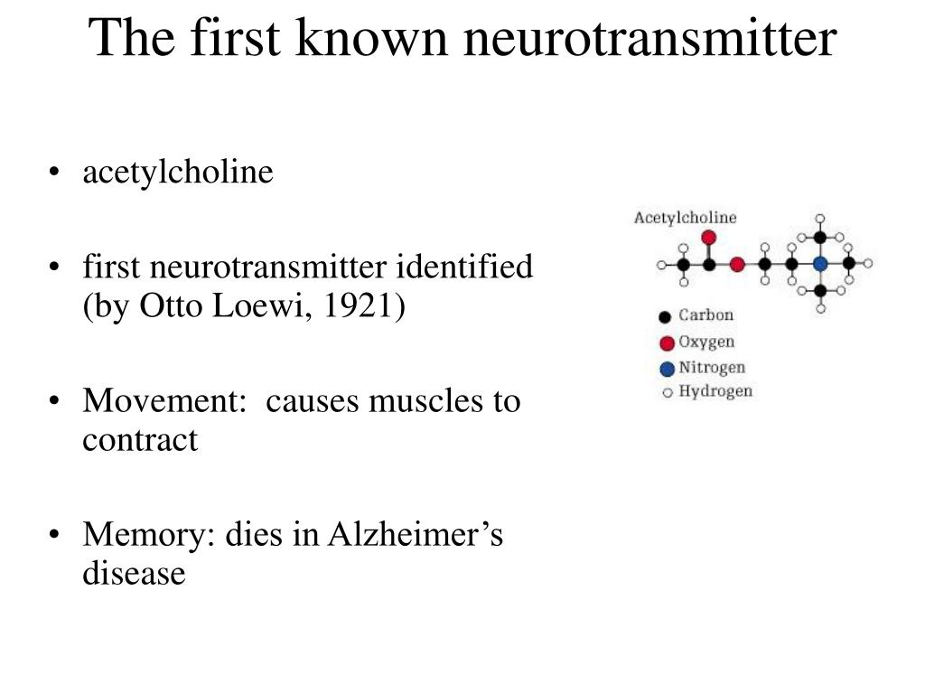 The first known neurotransmitter