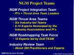 ngm project teams