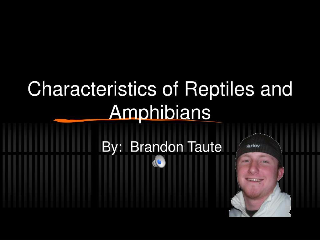 characteristics of reptiles and amphibians l.
