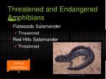 threatened and endangered amphibians