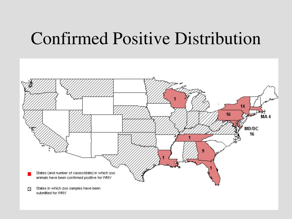 Confirmed Positive Distribution