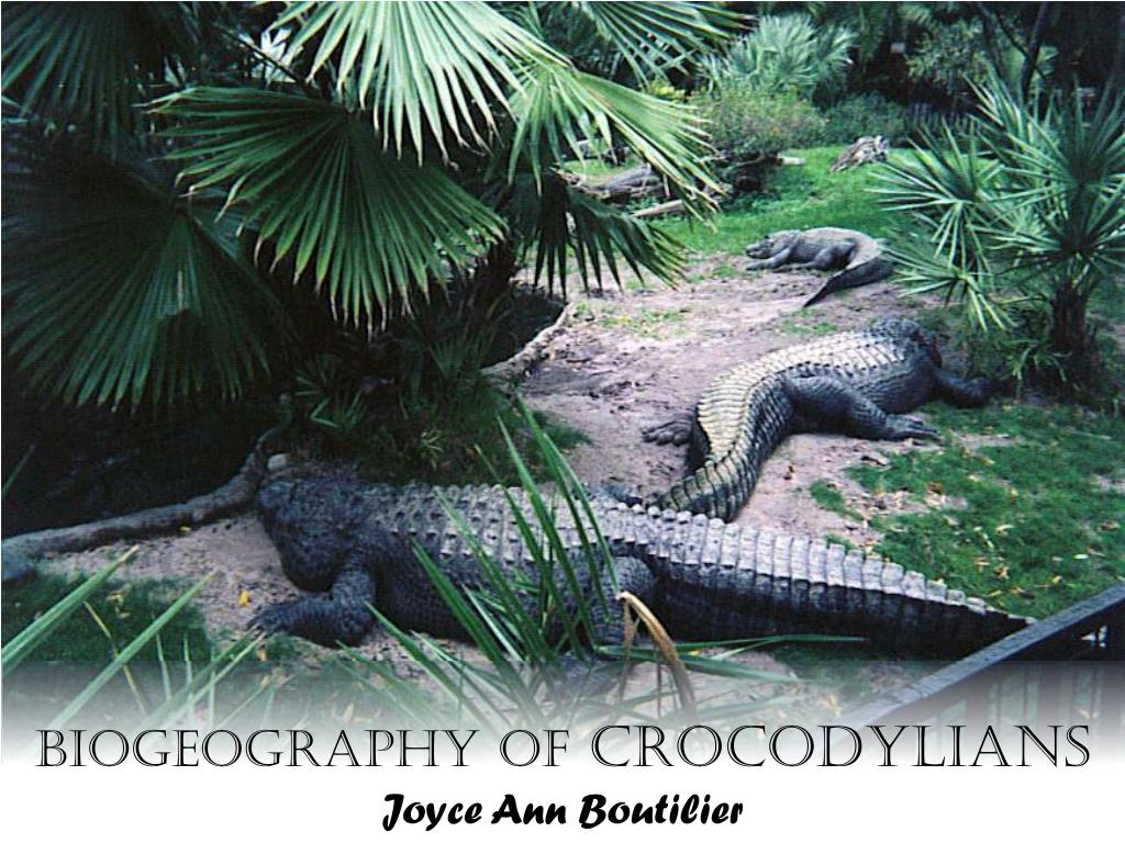 biogeography of crocodylians joyce ann boutilier l.