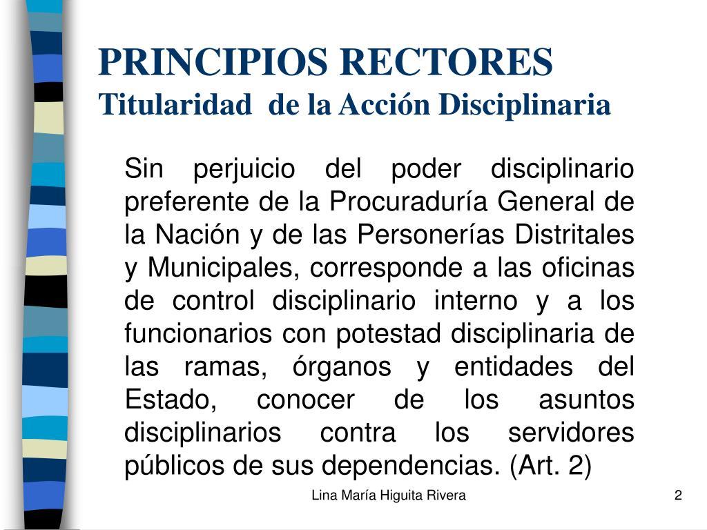PRINCIPIOS RECTORES