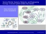 service worlds systems networks and engineering ecology of service system entities that interact