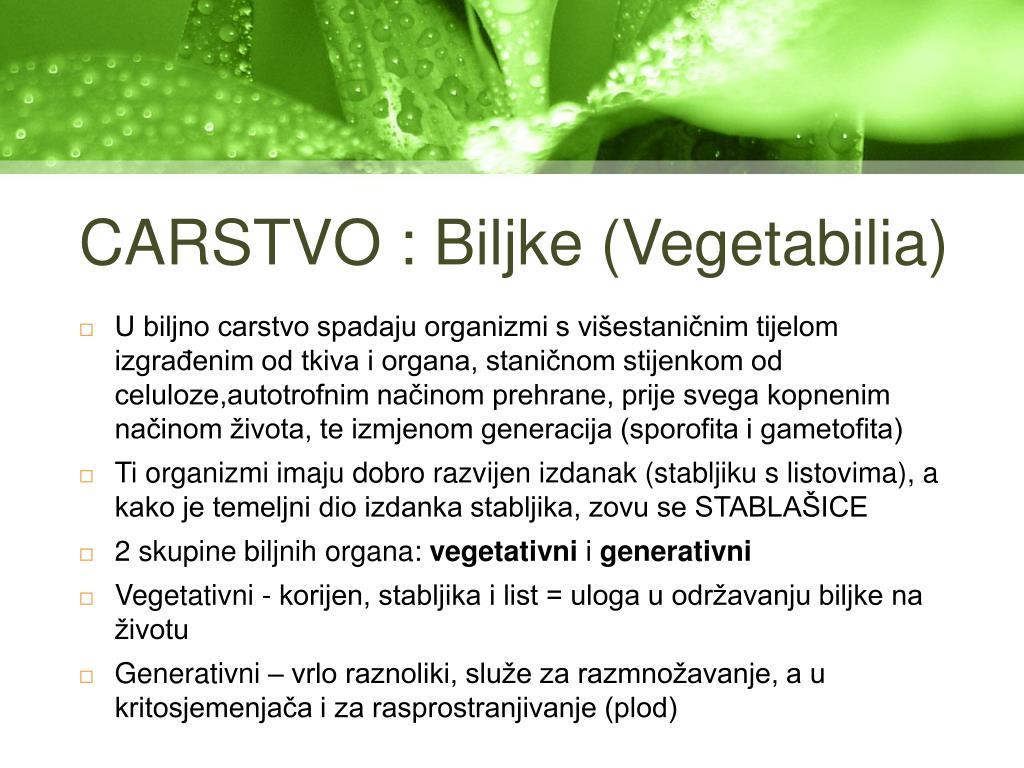 CARSTVO : Biljke (Vegetabilia)