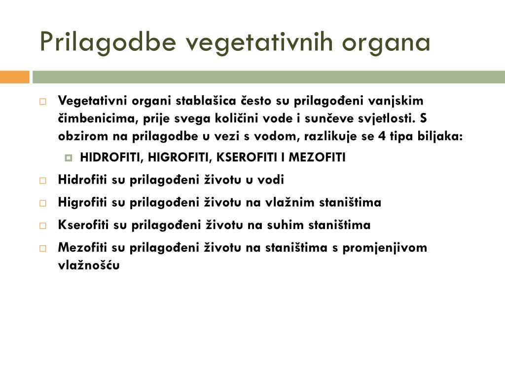 Prilagodbe vegetativnih organa