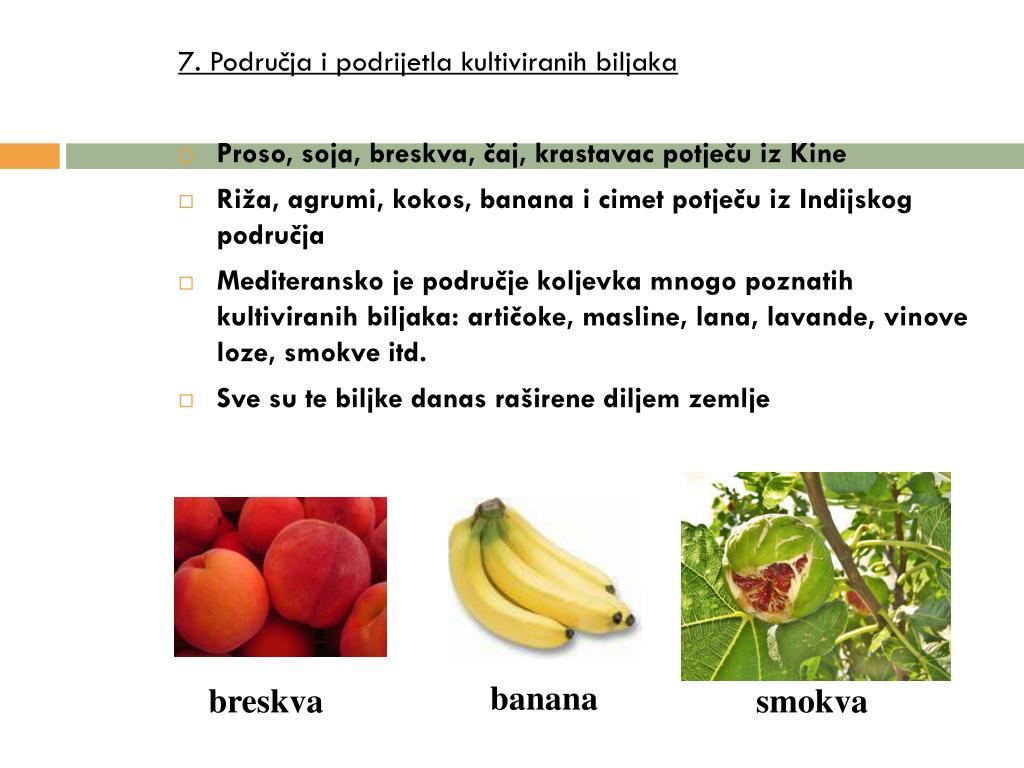 7. Područja i podrijetla kultiviranih biljaka