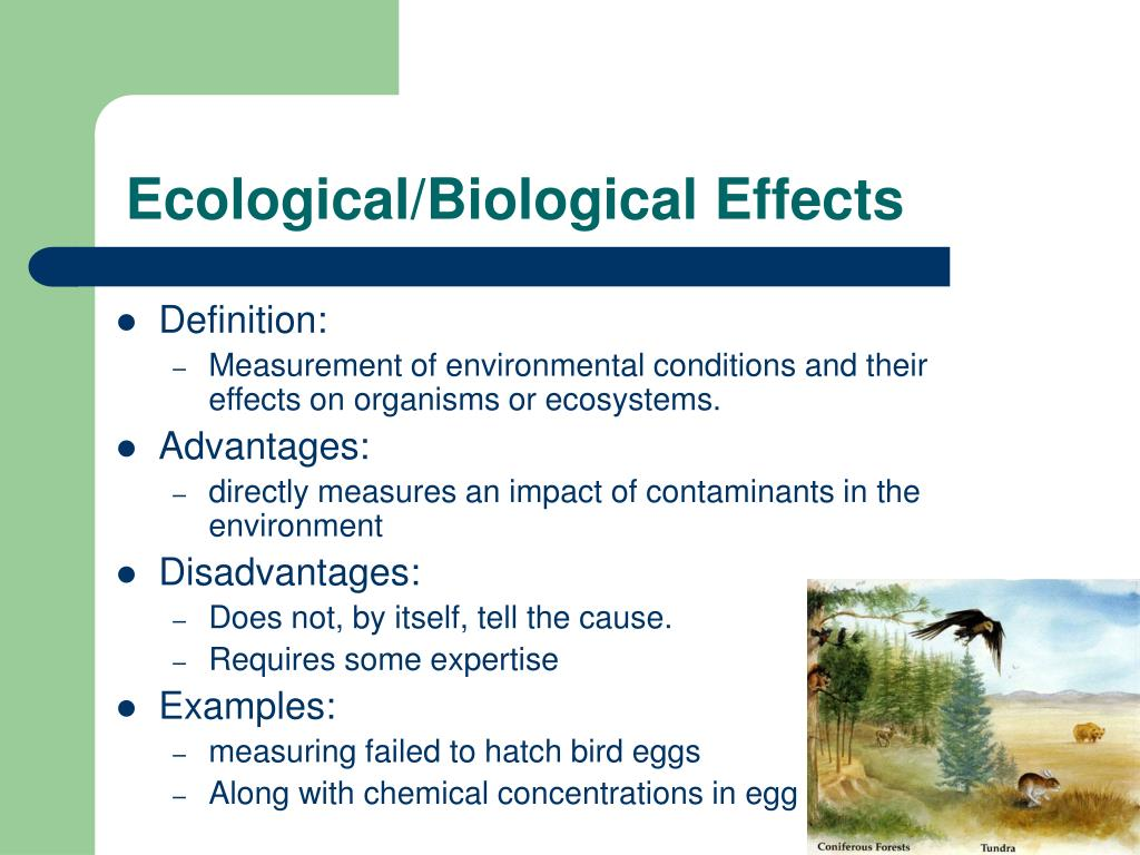 Ecological/Biological Effects