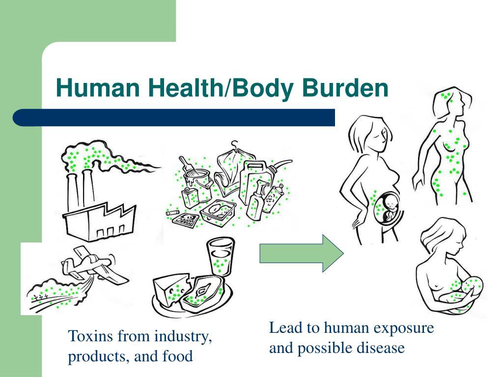 Human Health/Body Burden