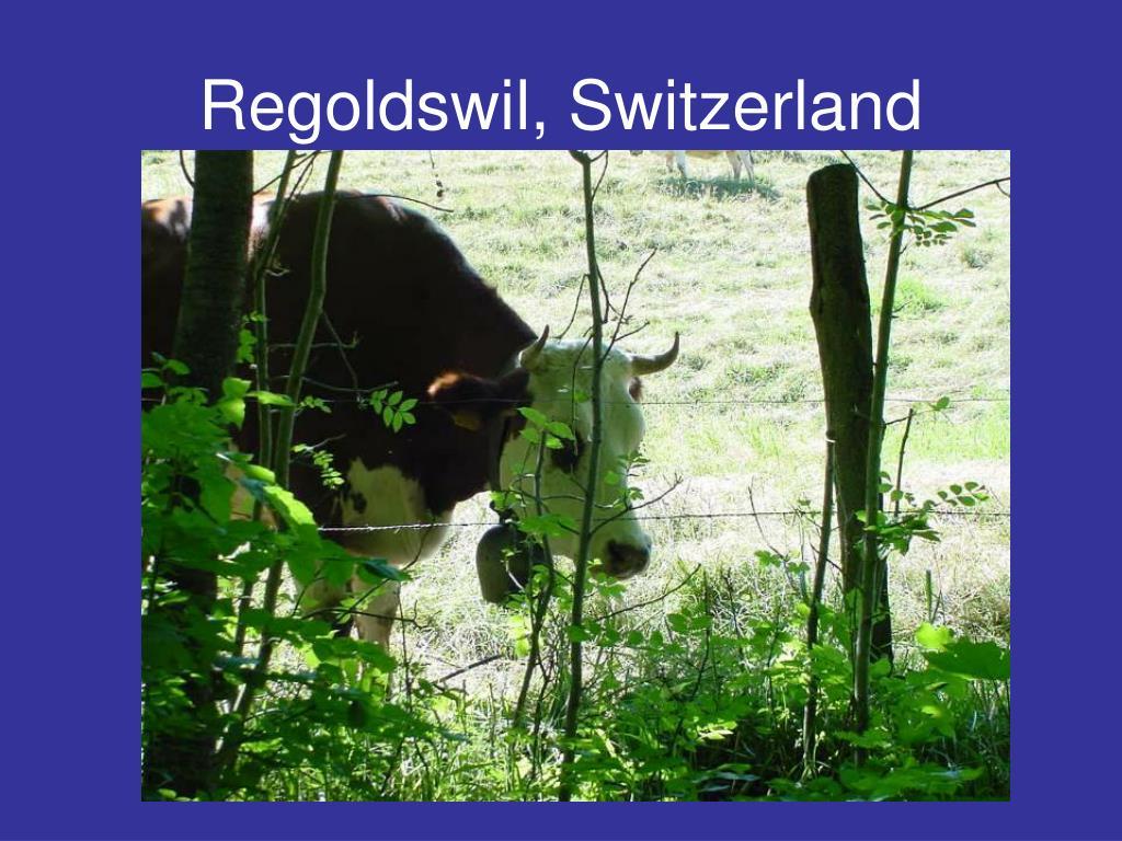 Regoldswil, Switzerland