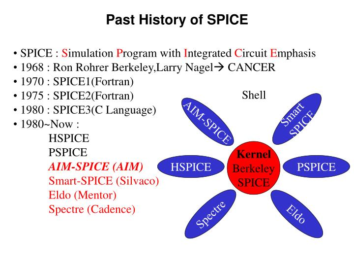 Past history of spice