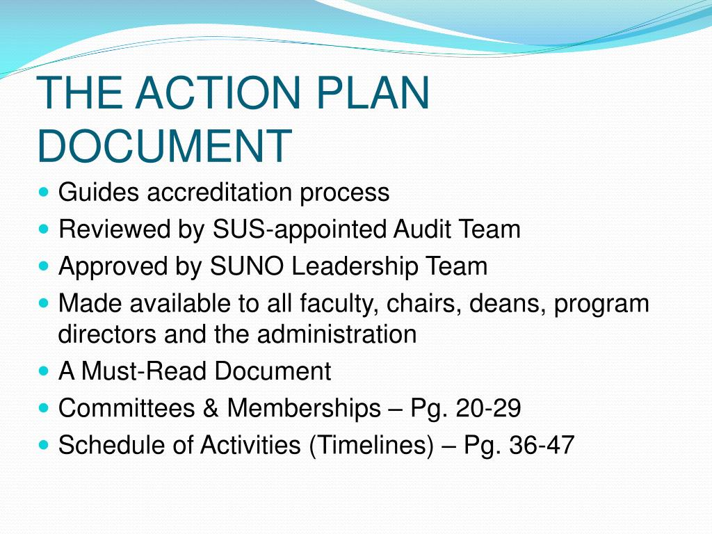 THE ACTION PLAN DOCUMENT
