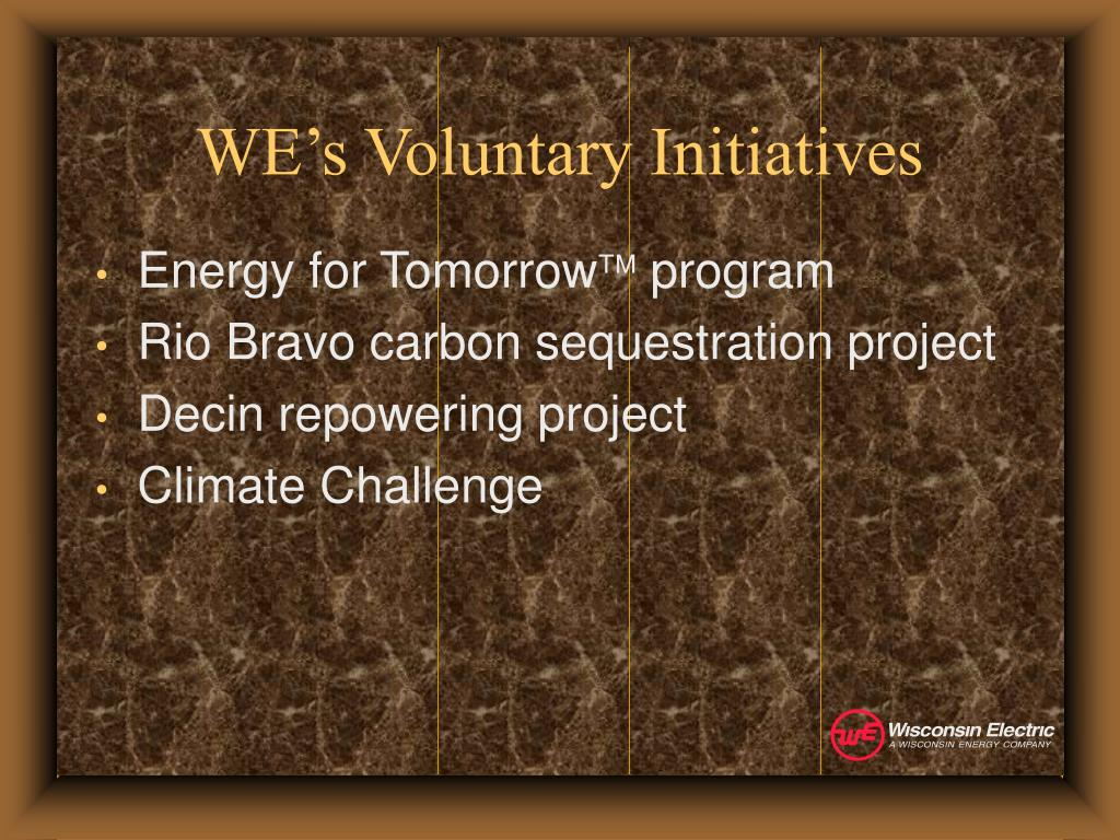 WE's Voluntary Initiatives