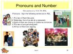 pronouns and number96
