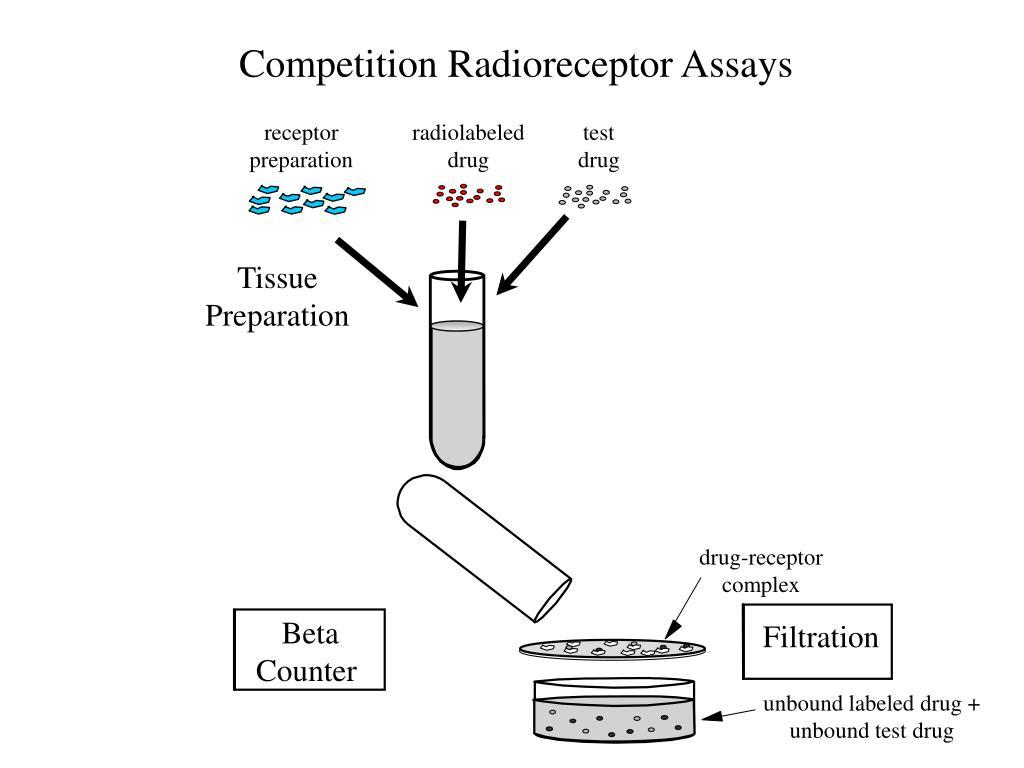 Competition Radioreceptor Assays