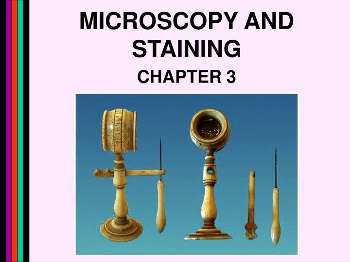 microscopy and staining n.