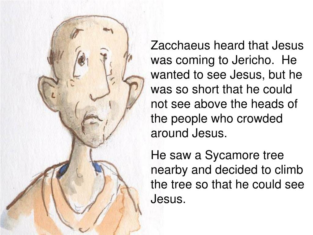 Zacchaeus heard that Jesus was coming to Jericho.  He wanted to see Jesus, but he was so short that he could not see above the heads of the people who crowded around Jesus.