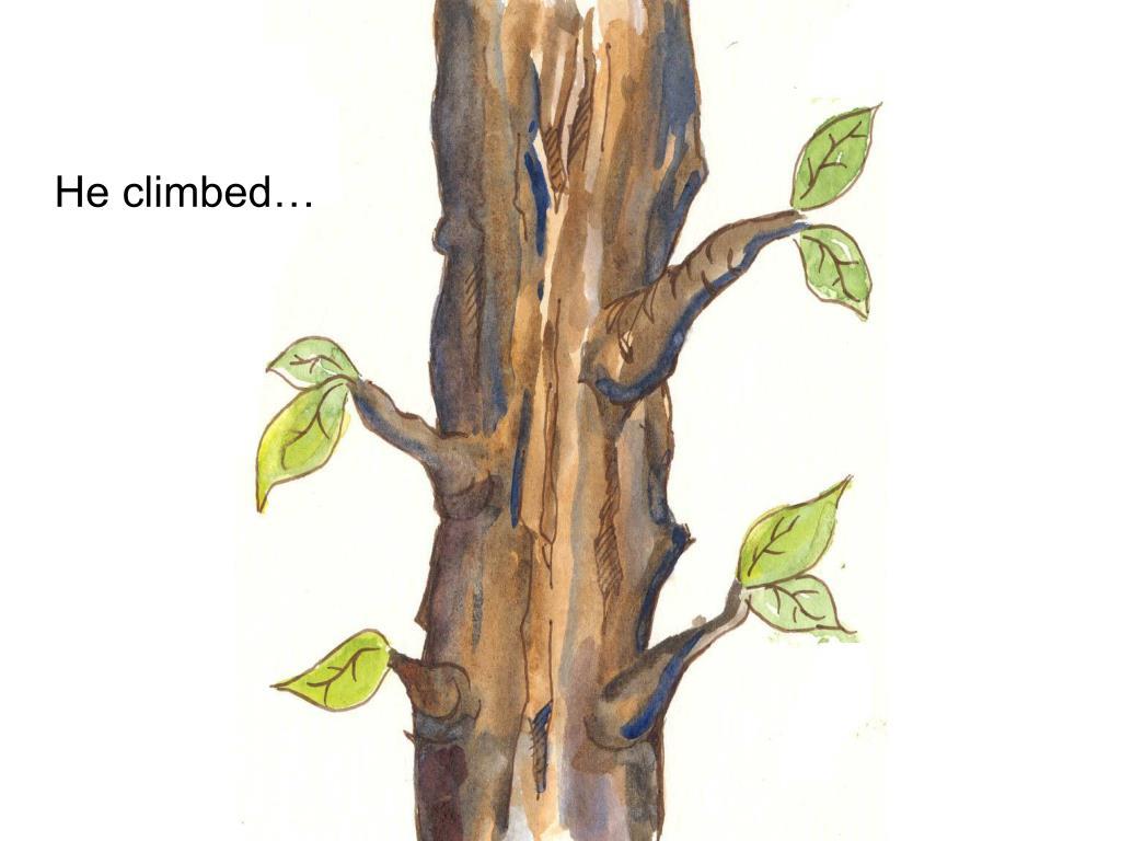 He climbed…