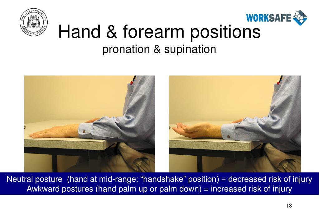 Hand & forearm positions