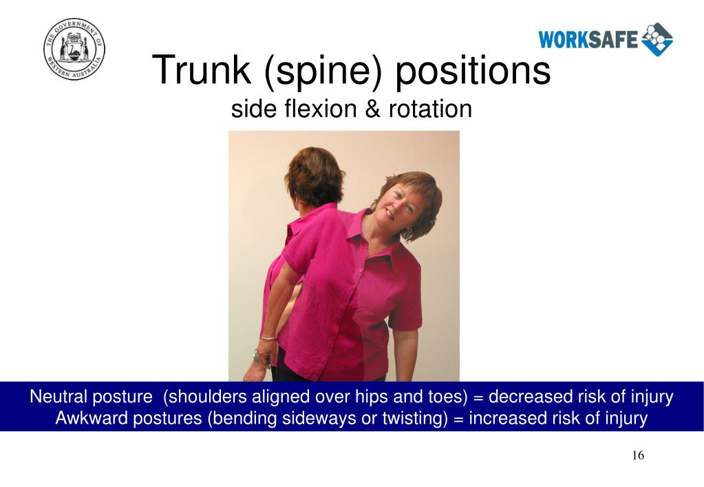 Trunk (spine) positions