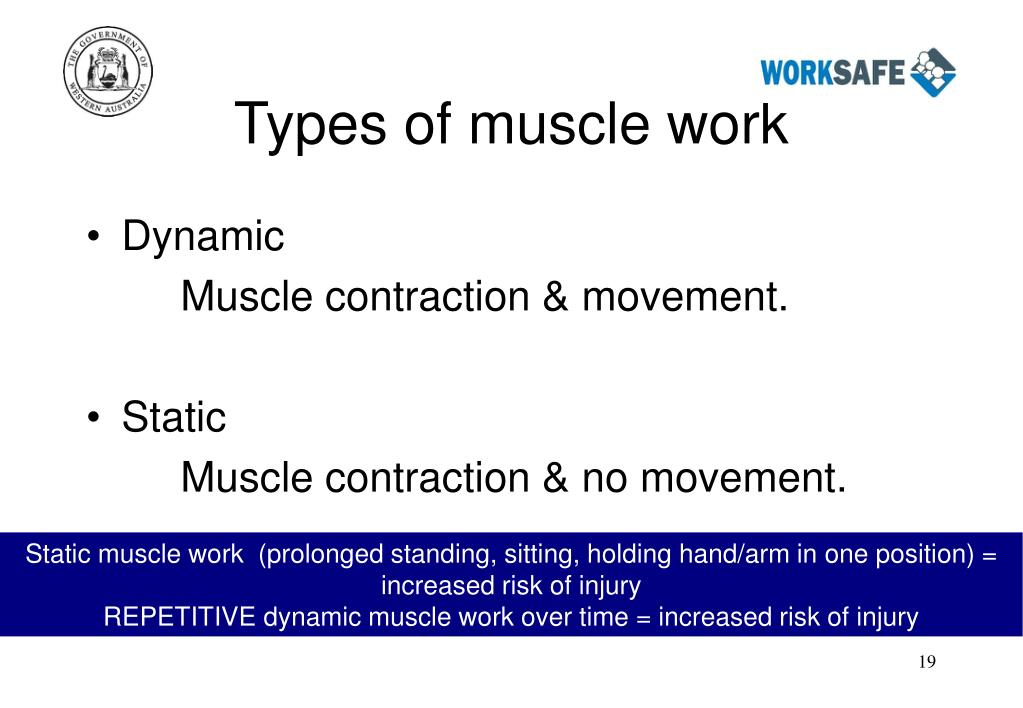 Types of muscle work