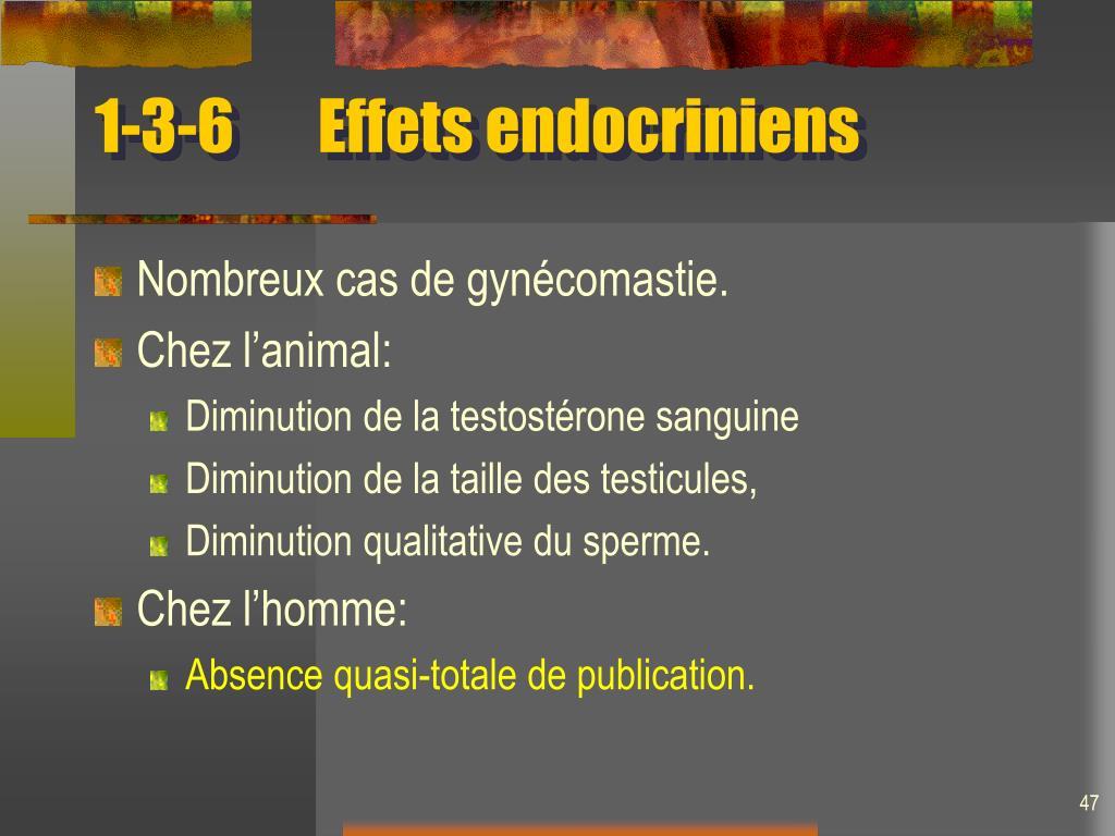 1-3-6Effets endocriniens