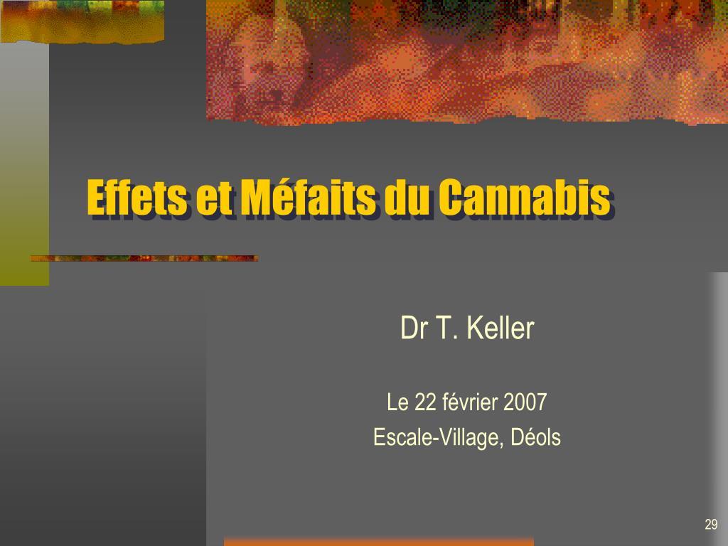 Effets et Méfaits du Cannabis