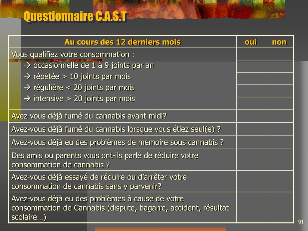 Questionnaire C.A.S.T