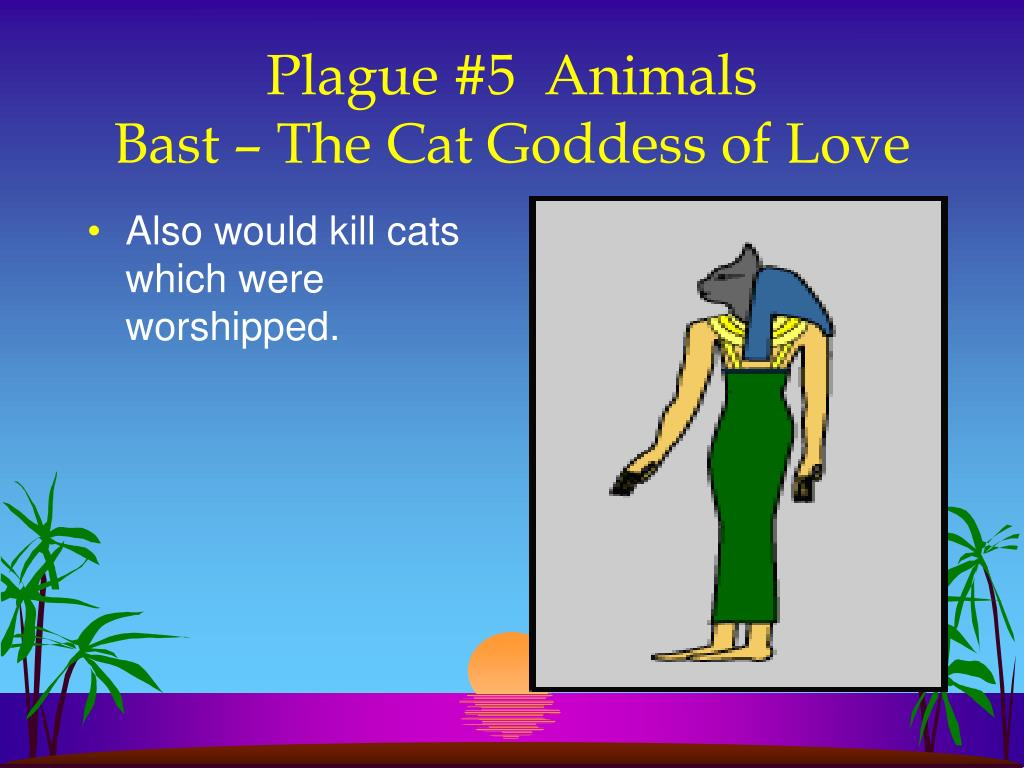 Also would kill cats which were worshipped.