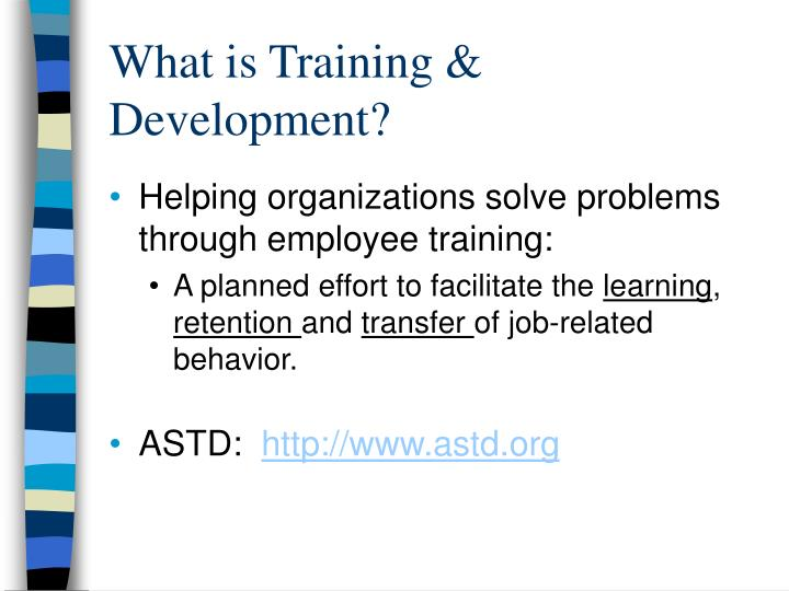What is training development