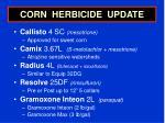 corn herbicide update