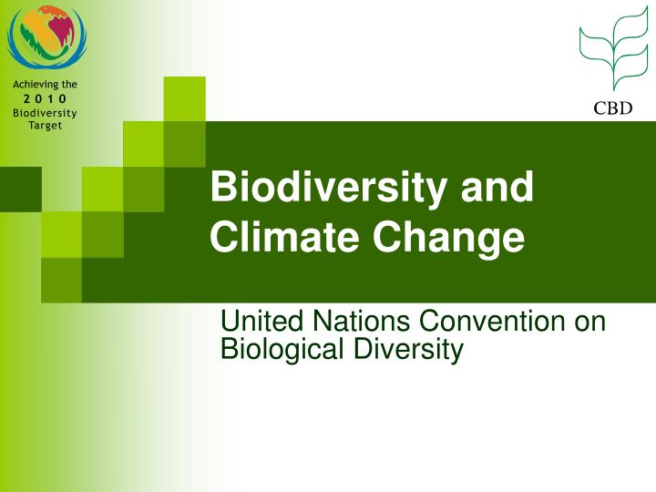 convention on biological diversity Convention on biological diversity - an element of the body of un documents for earth stewardship and international decades for a culture of peace and non-violence for the children of the world.